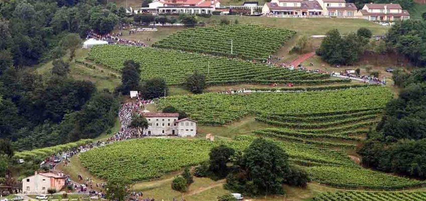 Varaschin - News - Giro d'Italia 2017