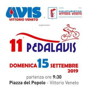 Varschin - PedalAvis 2019